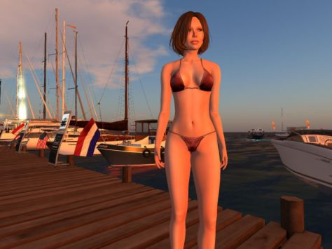 Dutch Harbour in Second Life